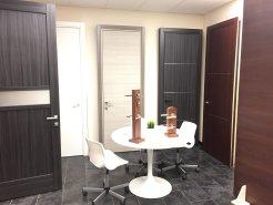 Showroom Door Factory - Contemporary Doors